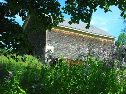 Old Wood Barn set within leaves and flowerss 1 from the Barns collection by jndphoto