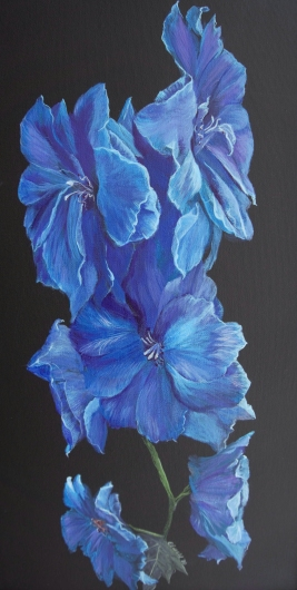 delphinium.tiff from the Floral collection by Ewaldart