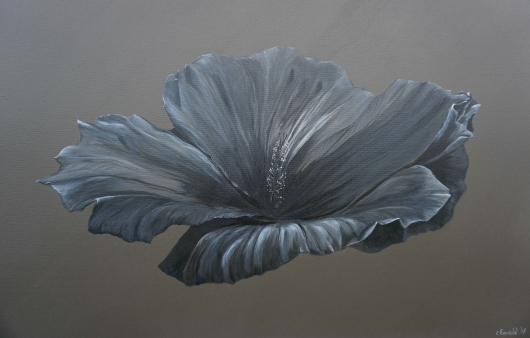 hibiscus_open.tiff from the Floral collection by Ewaldart