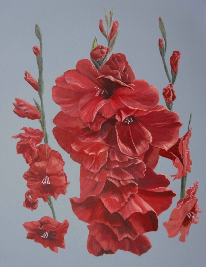 gladiolus.tiff from the Floral collection by Ewaldart