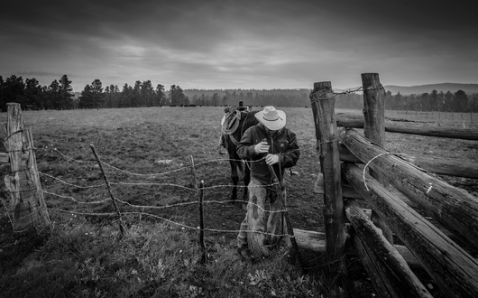 """""""The Gate Keeper"""" from the Western collection by Chris Couture Photography"""
