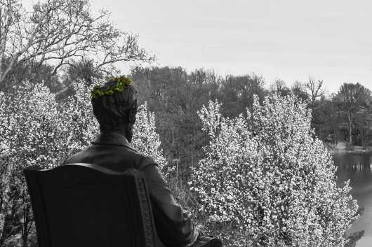 Abe Lincoln Statue, Japanese Gardens. Spring in Buffalo Series.  from the Gallery Selection: July 2016 collection by clear. photography