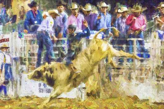 Rodeo Bull Rider and Friends 2016 AZ State Fair 2nd Place from the Arizona collection by Ladee K Rickard