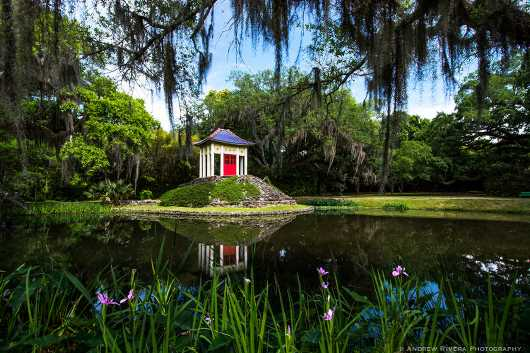 Buddhist Temple. Avery Island, Louisiana.   from the Gallery Photos  collection by Andy Rivera