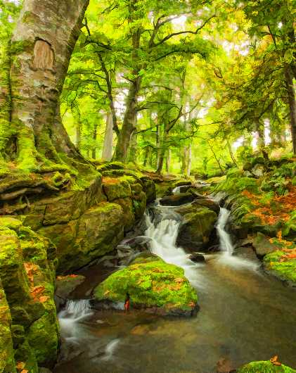 Fairy land from the Landscapes collection by Richard Milligan