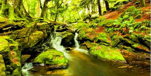 Irish fall from the Landscapes collection by Richard Milligan